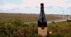 Bouteille de vin dans de l'herbe.
