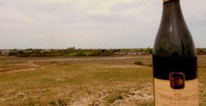 Chablis grand cru dans les dunes 02
